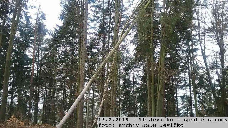 2019_02_13_TP_Jevicko_stromy-01