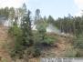 22.9.2016 požár lesa Městečko Trnávka